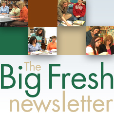 Big_Fresh_Newsletter_logo
