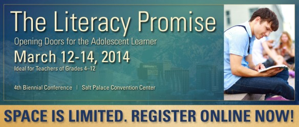 The Literacy Promise Banner