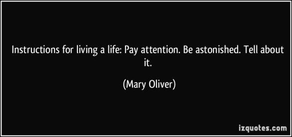 Pay-attention-be-astonished-tell-about-it-mary-oliver-256832