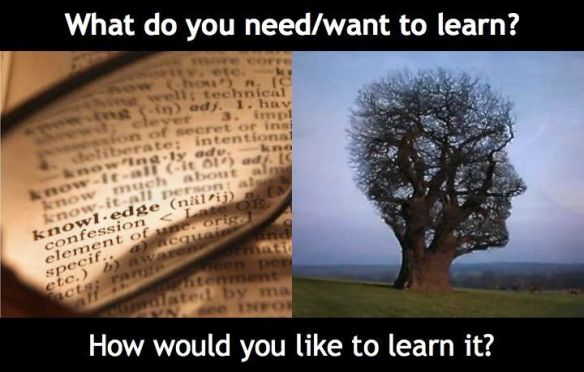 What Do You Need:Want to Learn